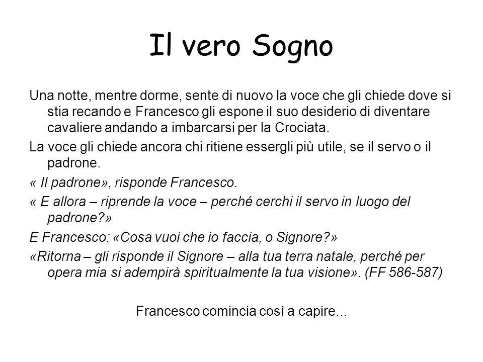 Ma perché Francesco ci sta così simpatico.