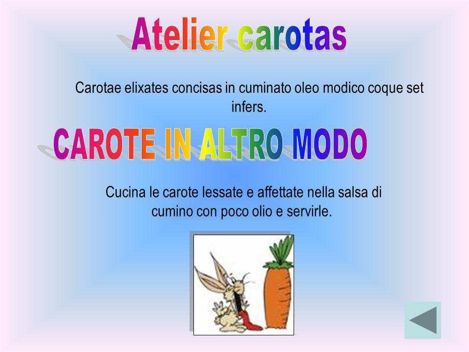 Carotae elixates concisas in cuminato oleo modico coque set infers. Cucina le carote lessate e affettate nella salsa di cumino con poco olio e servirl