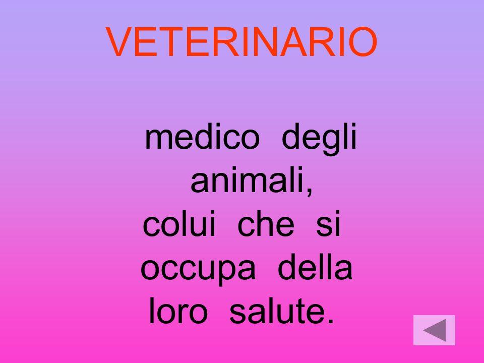 VETERINARIO medico degli animali, colui che si occupa della loro salute.