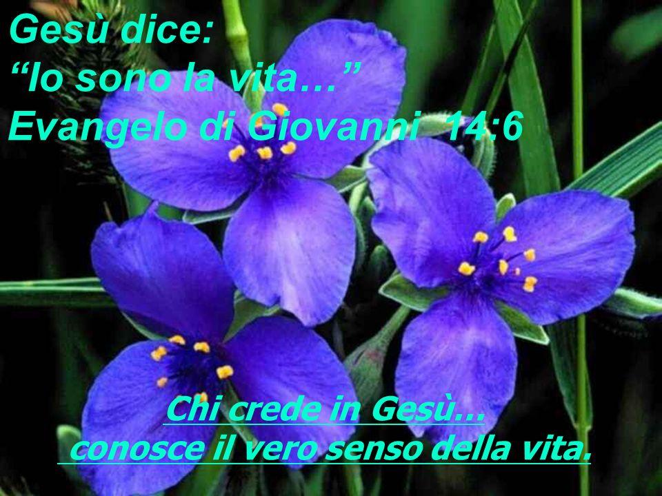 info@fontedivita.it Verità uniche… antiche…ma sempre attuali!!! http://www.fontedivita.it