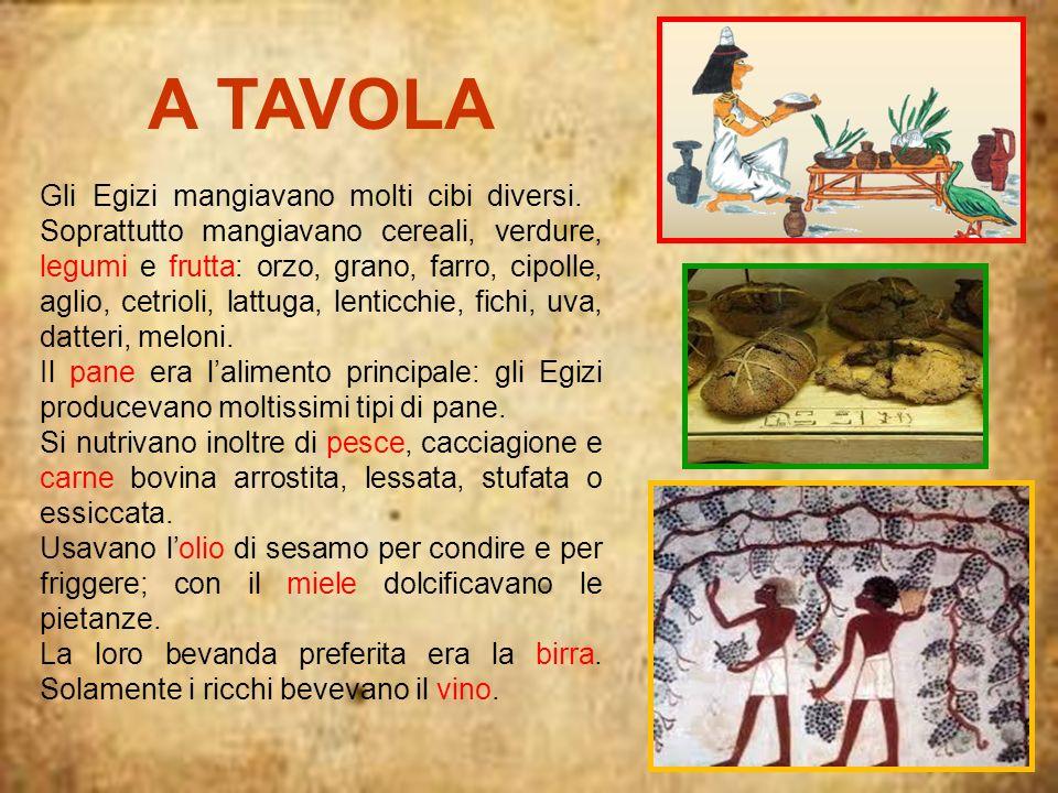 A TAVOLA Gli Egizi mangiavano molti cibi diversi. Soprattutto mangiavano cereali, verdure, legumi e frutta: orzo, grano, farro, cipolle, aglio, cetrio