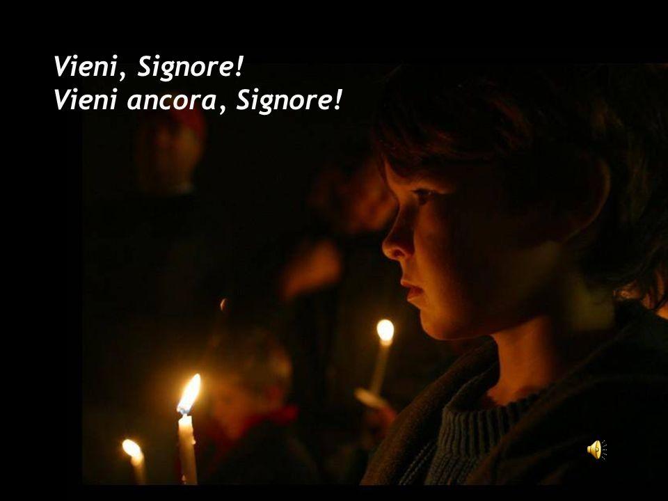 Vieni, Figlio di Dio, Luce del mondo! Vieni ancora, Signore.