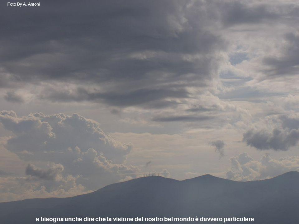 e bisogna anche dire che la visione del nostro bel mondo è davvero particolare Foto By A. Antoni