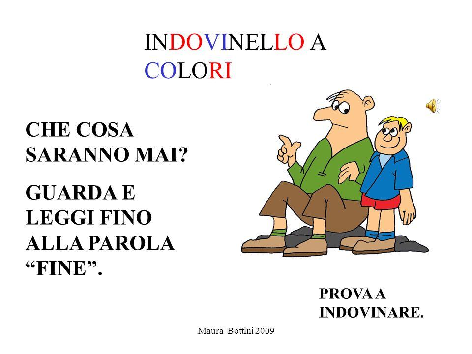 Maura Bottini 2009 INDOVINELLO A COLORI CHE COSA SARANNO MAI.