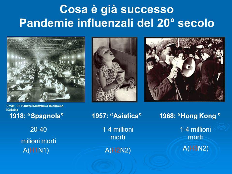 Cosa è già successo Pandemie influenzali del 20° secolo A(H1N1)A(H2N2) A(H3N2) 1918: Spagnola1957: Asiatica1968: Hong Kong 20-40 milioni morti 1-4 millioni morti Credit: US National Museum of Health and Medicine