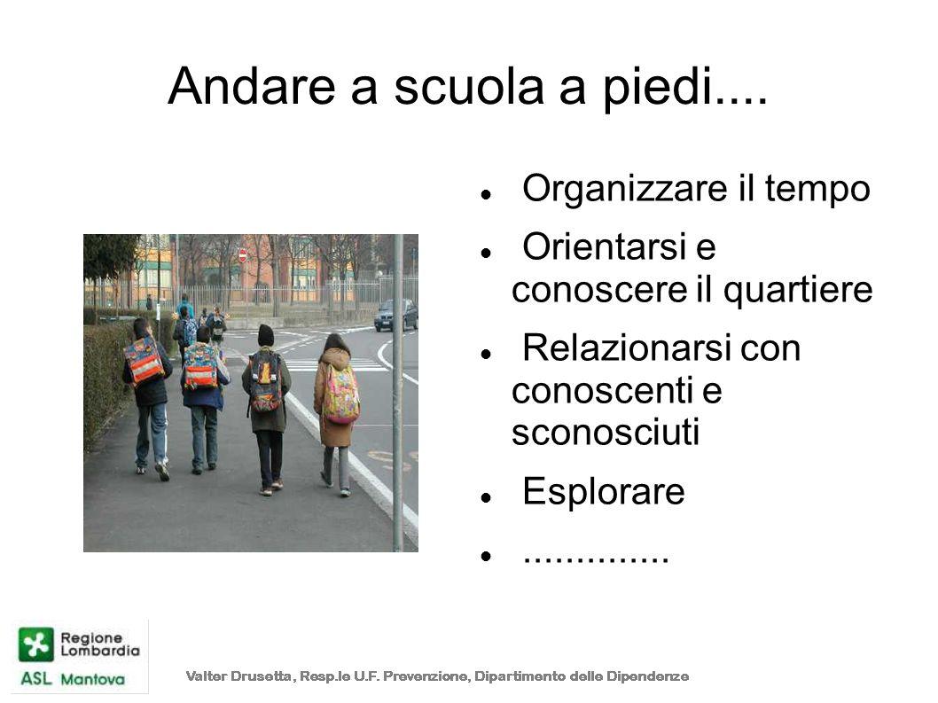 Andare a scuola a piedi.... Organizzare il tempo Orientarsi e conoscere il quartiere Relazionarsi con conoscenti e sconosciuti Esplorare..............