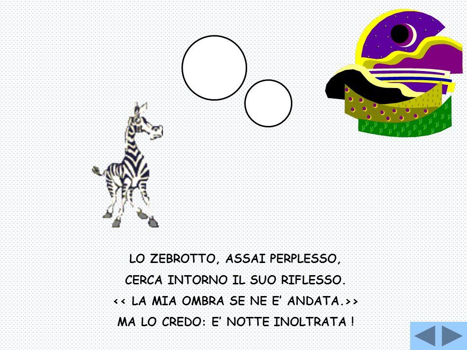 LO ZEBROTTO, ASSAI PERPLESSO, CERCA INTORNO IL SUO RIFLESSO. > MA LO CREDO: E NOTTE INOLTRATA !