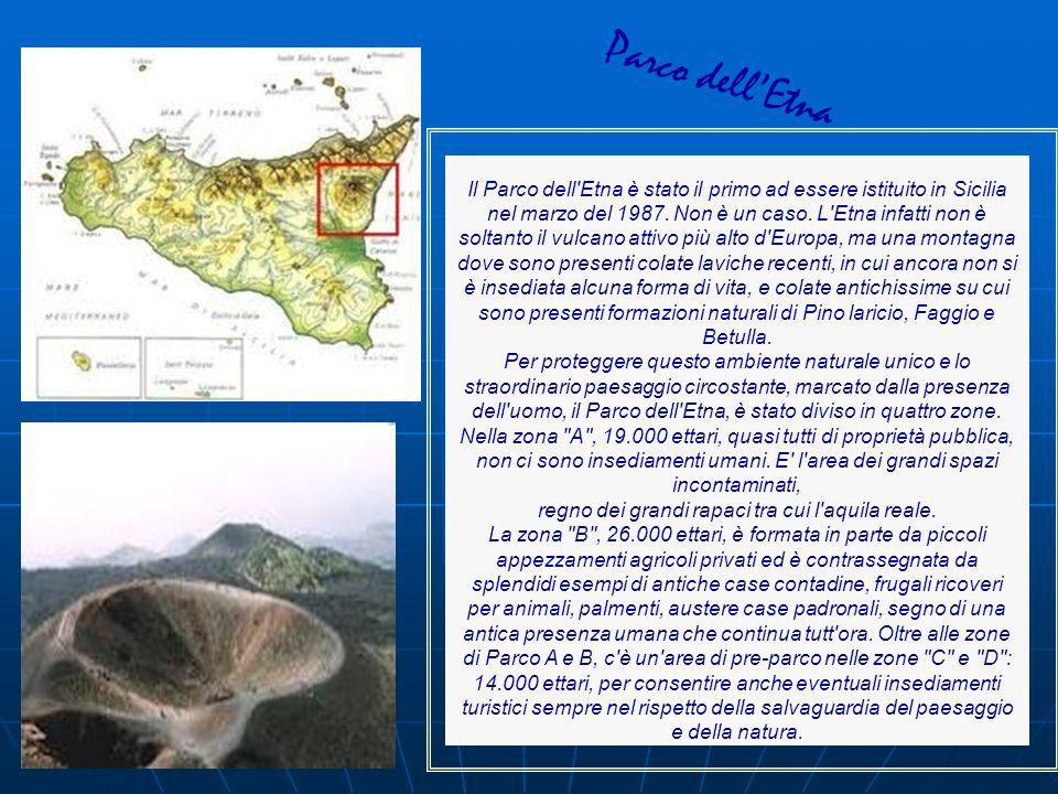Il Parco dell'Etna è stato il primo ad essere istituito in Sicilia nel marzo del 1987. Non è un caso. L'Etna infatti non è soltanto il vulcano attivo