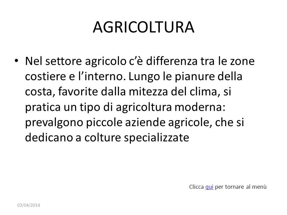 AGRICOLTURA Nel settore agricolo cè differenza tra le zone costiere e linterno.