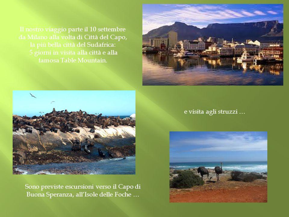 Il nostro viaggio parte il 10 settembre da Milano alla volta di Città del Capo, la più bella città del Sudafrica: 5 giorni in visita alla città e alla