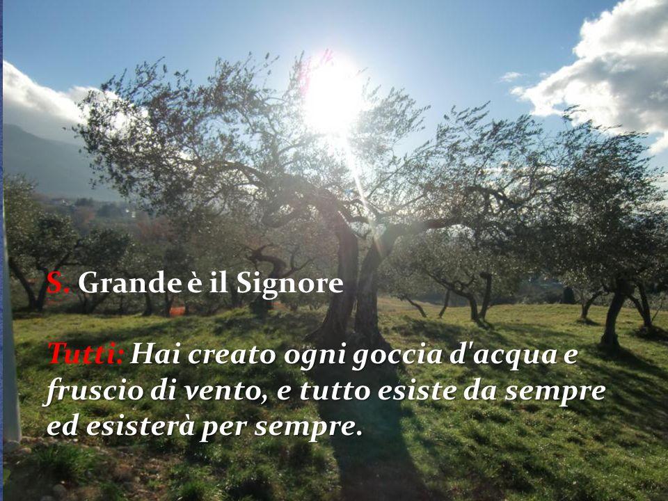 S: Resta nelle nostre case, Madre della fedeltà e della tenerezza, resta nella grande casa del mondo, custode della speranza.