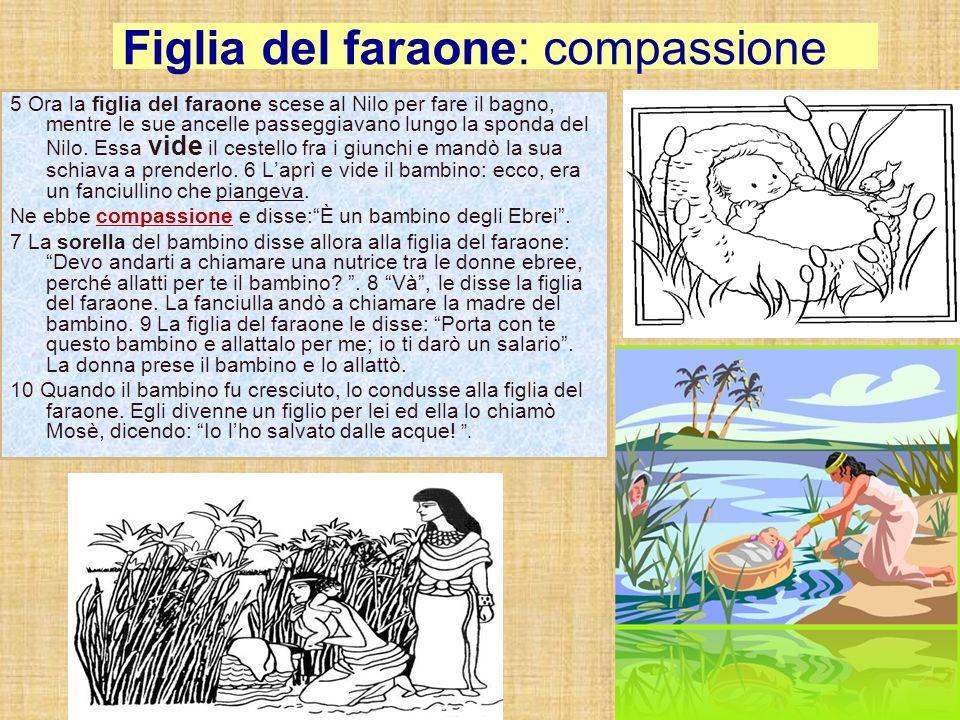 Figlia del faraone: compassione 5 Ora la figlia del faraone scese al Nilo per fare il bagno, mentre le sue ancelle passeggiavano lungo la sponda del N