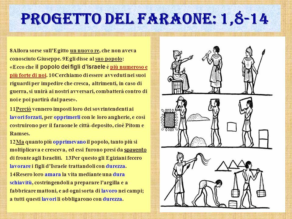 Progetto del faraone: 1,8-14 8Allora sorse sullEgitto un nuovo re, che non aveva conosciuto Giuseppe. 9Egli disse al suo popolo: «Ecco che il popolo d