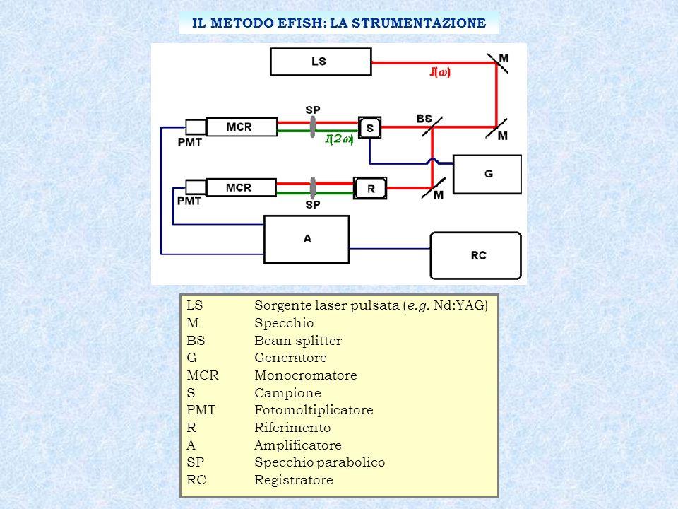 LSSorgente laser pulsata ( e.g. Nd:YAG) MSpecchio BSBeam splitter GGeneratore MCRMonocromatore SCampione PMTFotomoltiplicatore RRiferimento AAmplifica