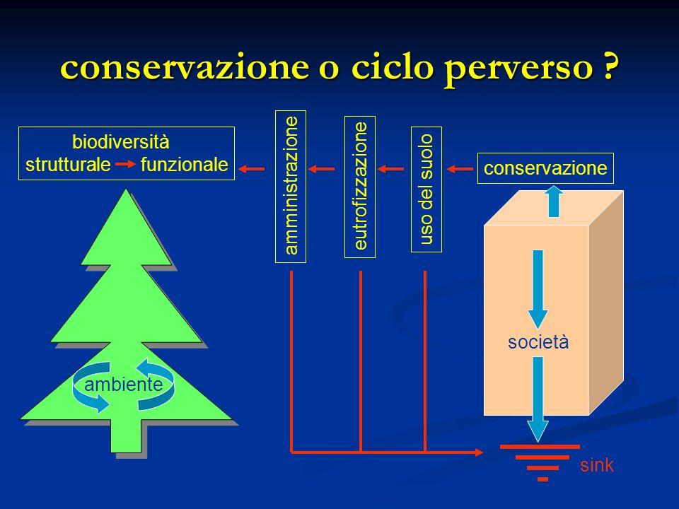 conservazione o ciclo perverso .