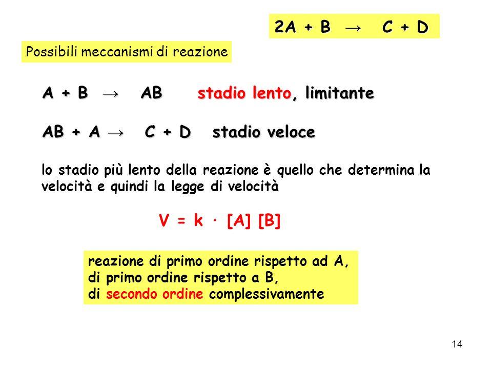 14 2A + B C + D Possibili meccanismi di reazione A + B AB stadio lento, limitante AB + A C + D stadio veloce lo stadio più lento della reazione è quel