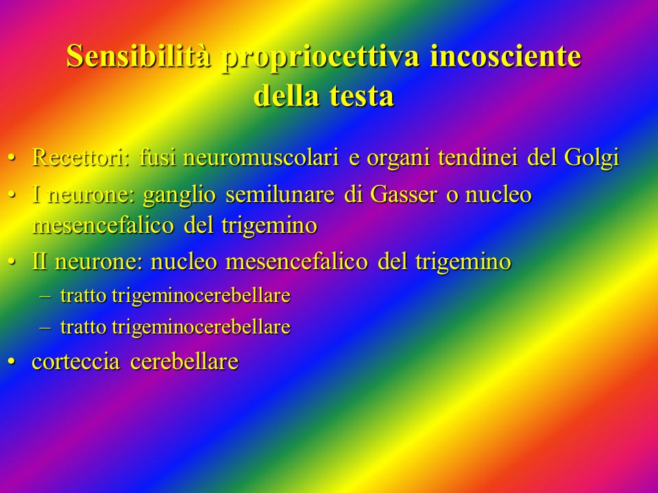Sensibilità propriocettiva incosciente della testa Recettori: fusi neuromuscolari e organi tendinei del GolgiRecettori: fusi neuromuscolari e organi t