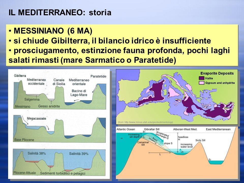 IL MEDITERRANEO: storia MESSINIANO (6 MA) si chiude Gibilterra, il bilancio idrico è insufficiente prosciugamento, estinzione fauna profonda, pochi laghi salati rimasti (mare Sarmatico o Paratetide) MESSINIANO (6 MA) si chiude Gibilterra, il bilancio idrico è insufficiente prosciugamento, estinzione fauna profonda, pochi laghi salati rimasti (mare Sarmatico o Paratetide)