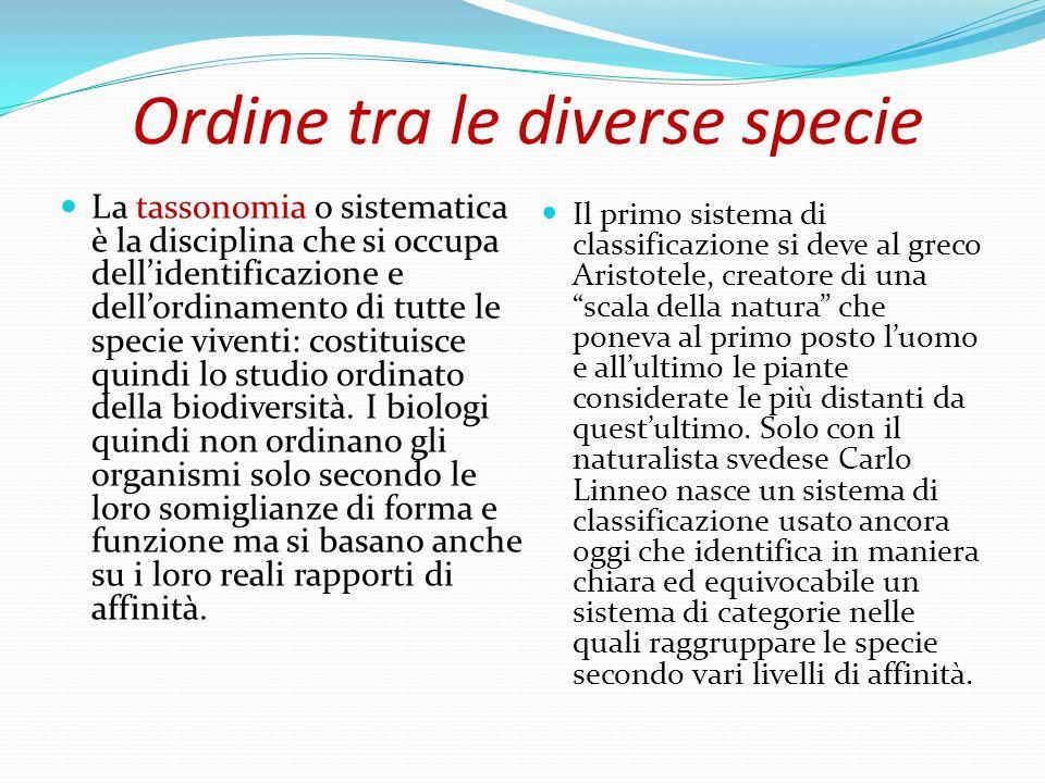 Ordine tra le diverse specie La tassonomia o sistematica è la disciplina che si occupa dellidentificazione e dellordinamento di tutte le specie vivent