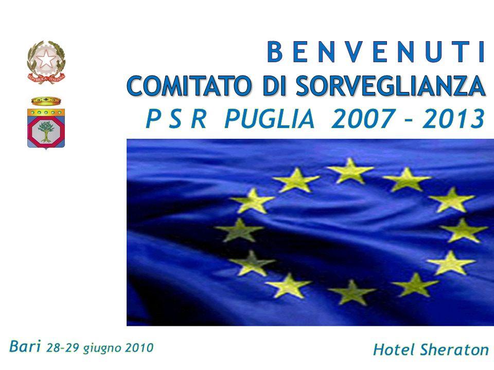 Comitato di Sorveglianza 29 giugno 2010Programma di Sviluppo Rurale della Puglia 2007/2013 Approvazione Ordine del Giorno
