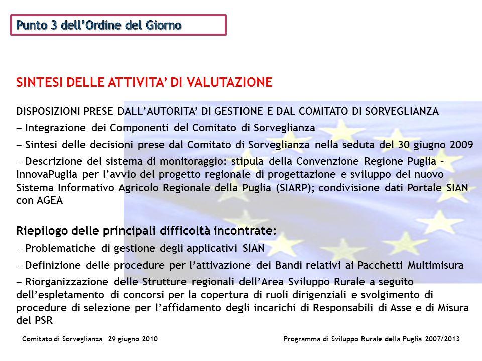 La Valutazione del PSR Comitato di Sorveglianza 29 giugno 2010Programma di Sviluppo Rurale della Puglia 2007/2013 Le attività AttivitàTempi DicembreGiugnoLuglioAgostoSettembreOttobre Definizione BandoX Aggiudicazione Bando X Disegno di Valutazione X Raccolta ed analisi dei dati XX Stesura Rapporto Intermedio XX