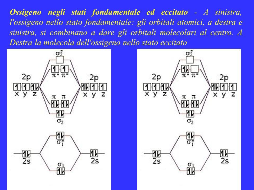 Ossigeno negli stati fondamentale ed eccitato - A sinistra, l'ossigeno nello stato fondamentale: gli orbitali atomici, a destra e sinistra, si combina