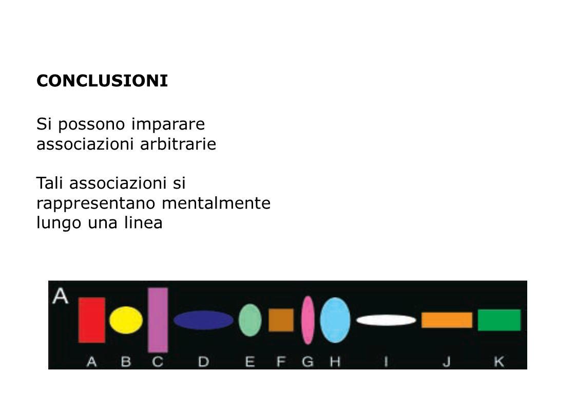 12 Dicembre 2013 Gruppo ADHD CONCLUSIONI Si possono imparare associazioni arbitrarie Tali associazioni si rappresentano mentalmente lungo una linea
