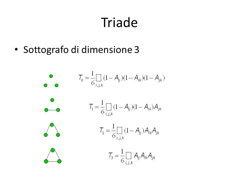 Triade Sottografo di dimensione 3