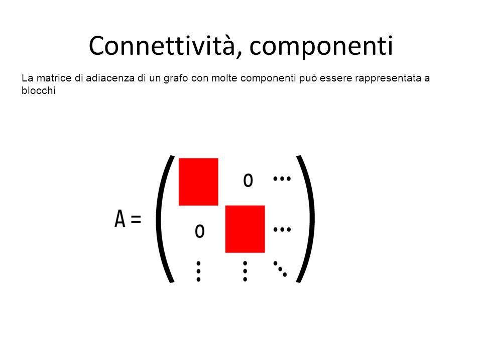 La matrice di adiacenza di un grafo con molte componenti può essere rappresentata a blocchi Connettività, componenti