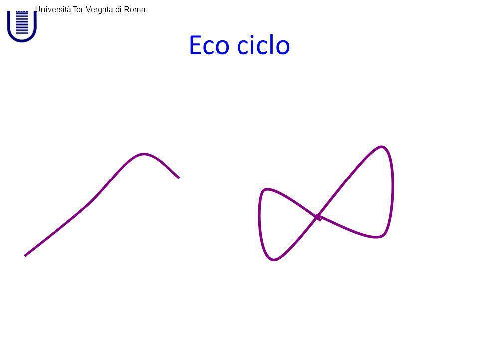 Università Tor Vergata di Roma Eco ciclo