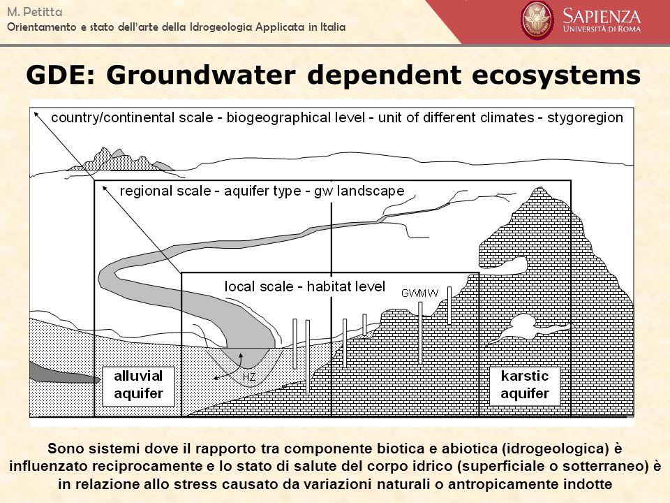 M. Petitta Orientamento e stato dellarte della Idrogeologia Applicata in Italia GDE: Groundwater dependent ecosystems Sono sistemi dove il rapporto tr