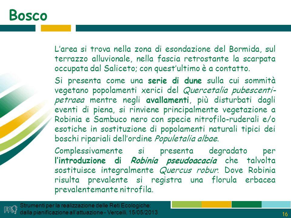 16 Bosco Strumenti per la realizzazione delle Reti Ecologiche: dalla pianificazione allattuazione - Vercelli, 15/05/2013 Larea si trova nella zona di esondazione del Bormida, sul terrazzo alluvionale, nella fascia retrostante la scarpata occupata dal Saliceto; con questultimo è a contatto.