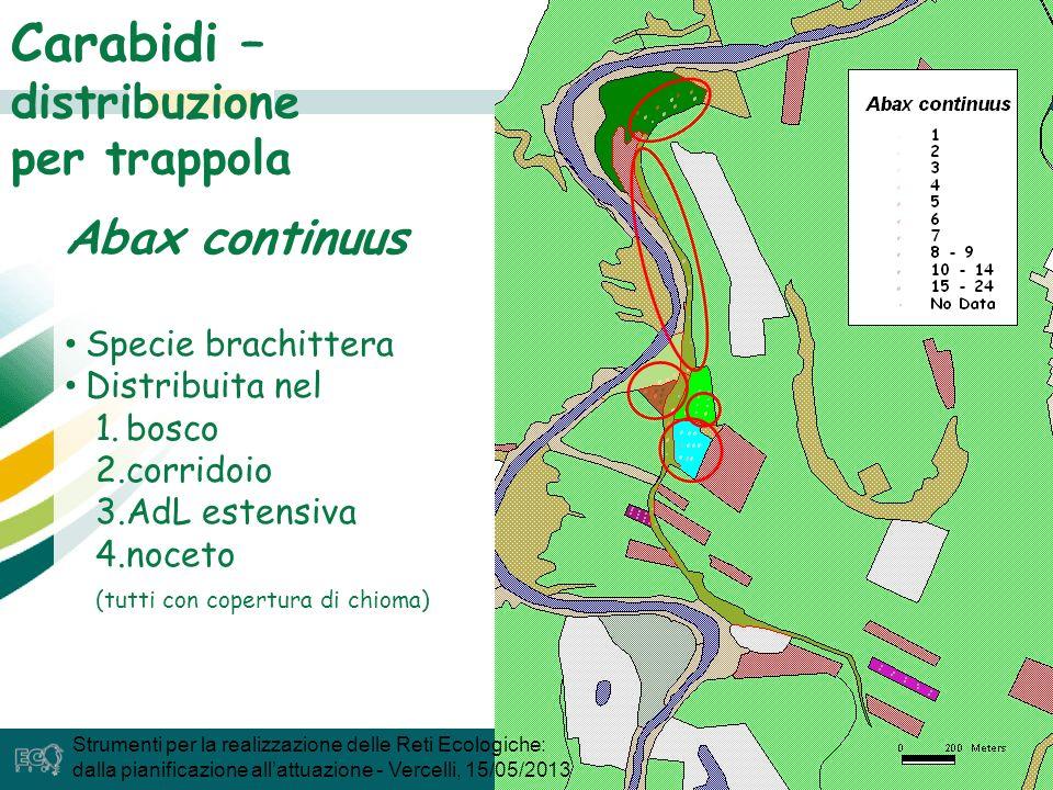 33 Carabidi – distribuzione per trappola Abax continuus Specie brachittera Distribuita nel 1.bosco 2.corridoio 3.AdL estensiva 4.noceto (tutti con copertura di chioma) Strumenti per la realizzazione delle Reti Ecologiche: dalla pianificazione allattuazione - Vercelli, 15/05/2013