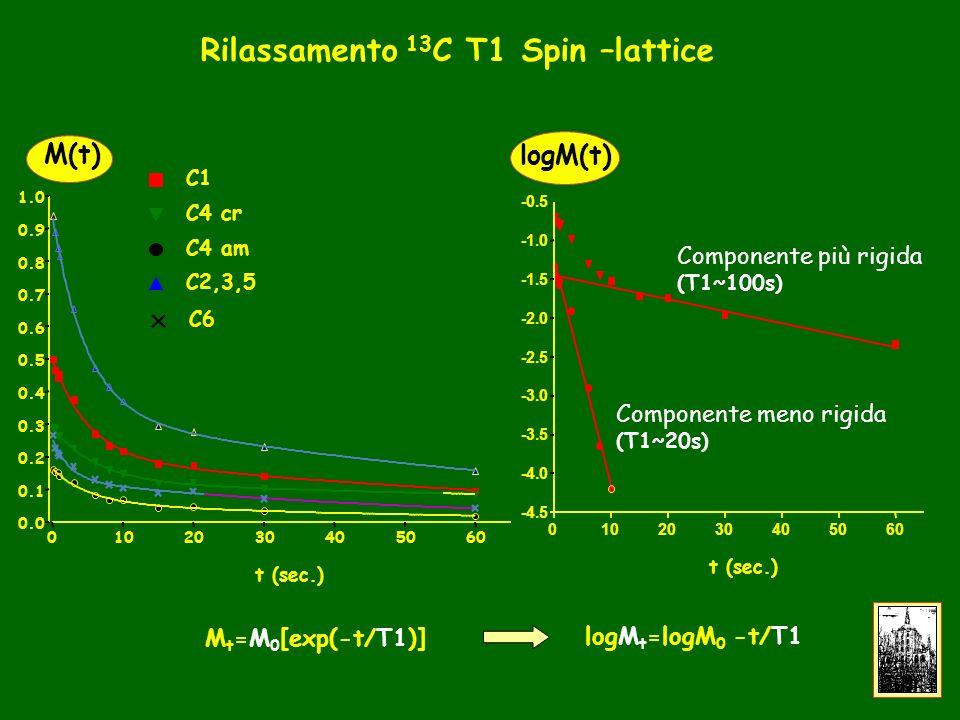 30405060 0.0 0.1 0.2 0.3 0.4 0.5 0.6 0.7 0.8 0.9 1.0 C1 C4 cr C4 am C2,3,5 C6 t (sec.) M(t) Componente più rigida (T1~100s) Componente meno rigida (T1~20s) 0102030405060 -4.5 -4.0 -3.5 -3.0 -2.5 -2.0 -1.5 -0.5 t (sec.) logM(t) Rilassamento 13 C T1 Spin –lattice M t =M 0 [exp(-t/T1)] logM t =logM 0 -t/T1