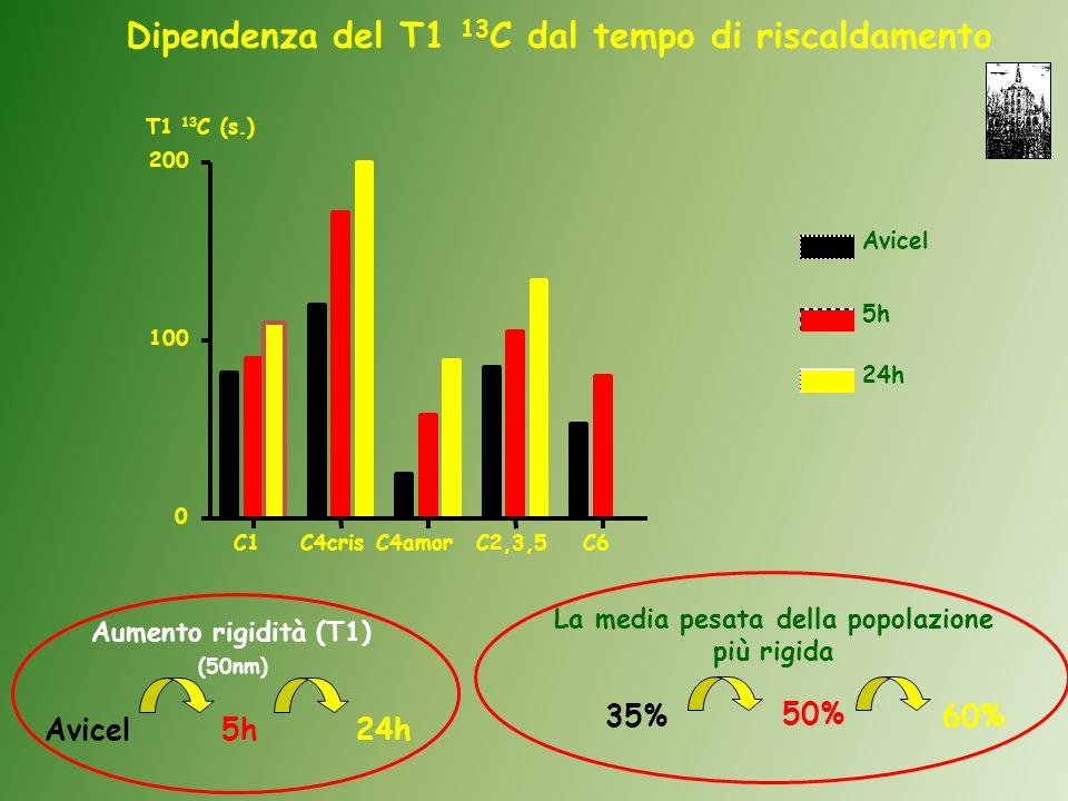Avicel5h24h Aumento rigidità (T1) (50nm) Avicel 5h 24h T1 13 C (s.) C1C4crisC4amorC2,3,5C6 0 100 200 Dipendenza del T1 13 C dal tempo di riscaldamento La media pesata della popolazione più rigida 35% 50% 60%
