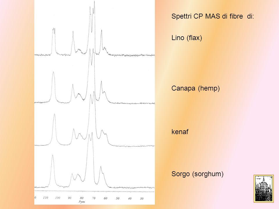 Lino (flax) Canapa (hemp) kenaf Sorgo (sorghum) Spettri CP MAS di fibre di: