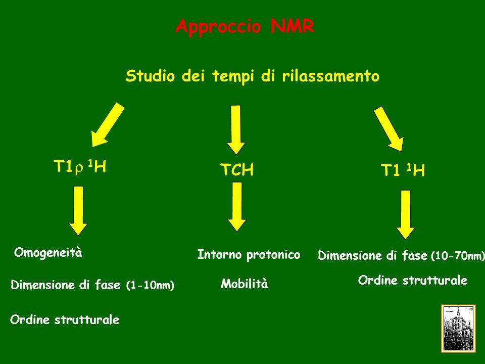 Approccio NMR Studio dei tempi di rilassamento T1 1 H Omogeneità Dimensione di fase (1-10nm) Ordine strutturale TCH Mobilità T1 1 H Ordine strutturale Intorno protonico Dimensione di fase (10-70nm)