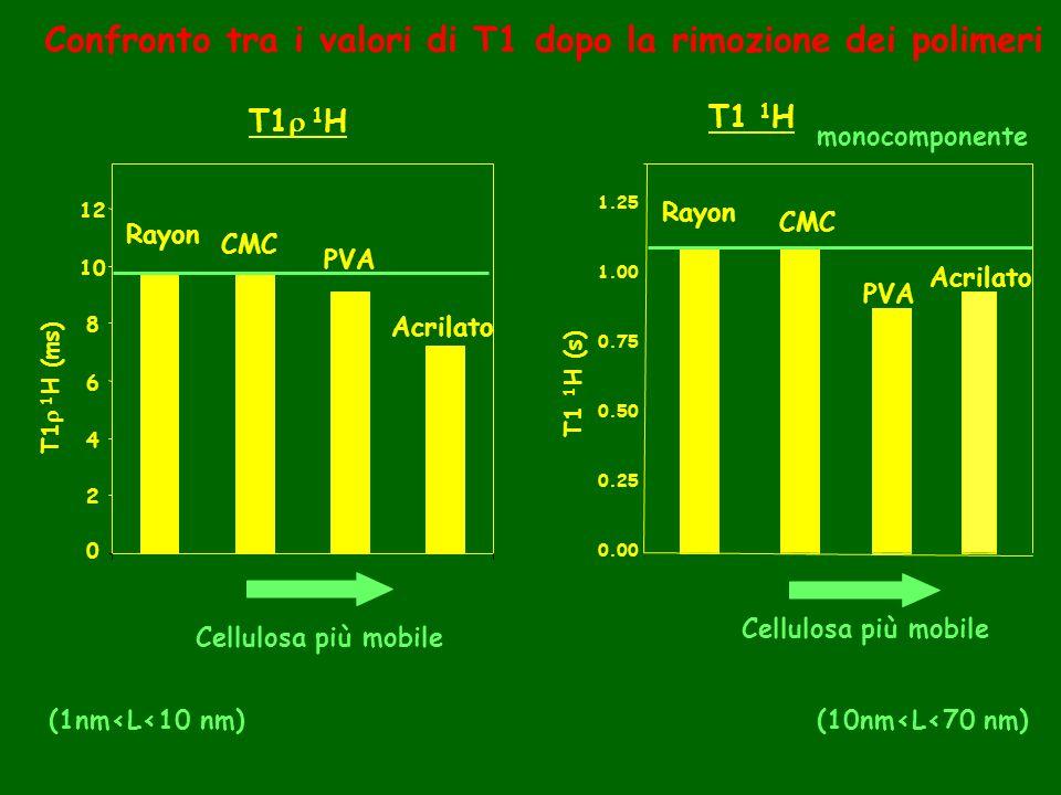 Confronto tra i valori di T1 dopo la rimozione dei polimeri 0 2 4 6 8 10 12 Rayon CMC PVA Acrilato T1 1 H (ms) Cellulosa più mobile (1nm<L<10 nm) T1 1 H T1 1 H (s) 0.00 0.25 0.50 0.75 1.00 1.25 Rayon CMC PVA Acrilato Cellulosa più mobile (10nm<L<70 nm) T1 1 H monocomponente