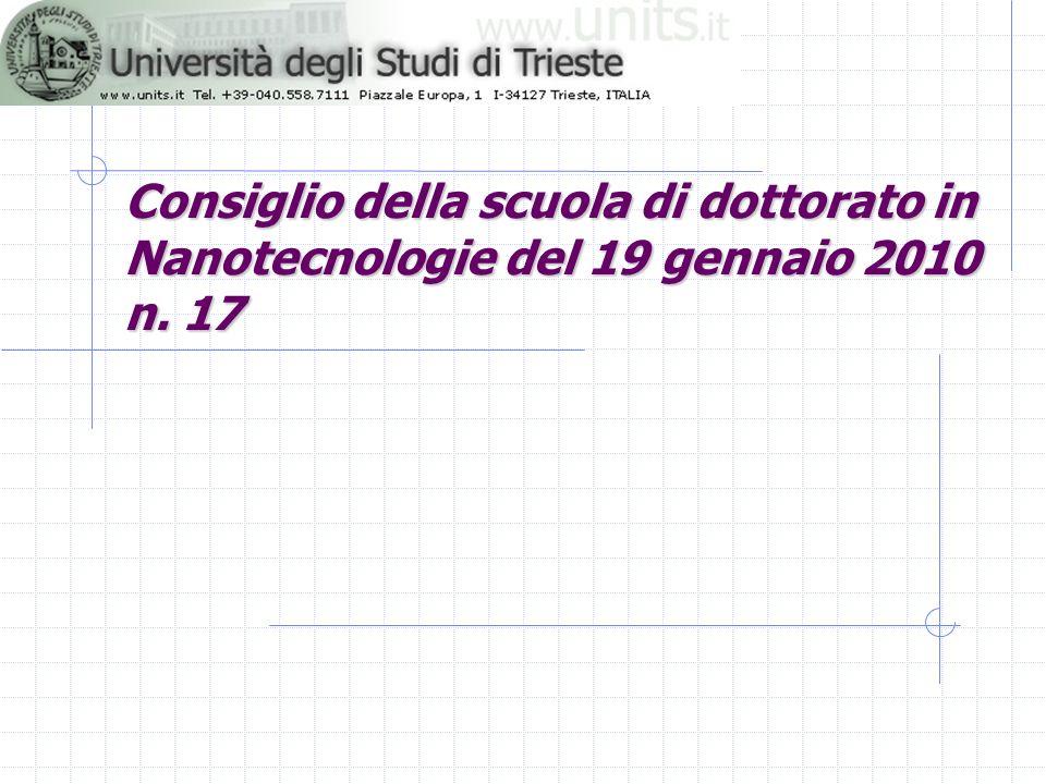 Consiglio della scuola di dottorato in Nanotecnologie del 19 gennaio 2010 n. 17