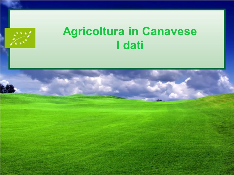Agricoltura in Canavese I dati