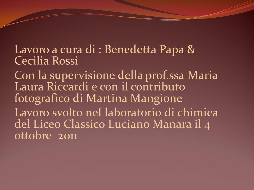 Lavoro a cura di : Benedetta Papa & Cecilia Rossi Con la supervisione della prof.ssa Maria Laura Riccardi e con il contributo fotografico di Martina M