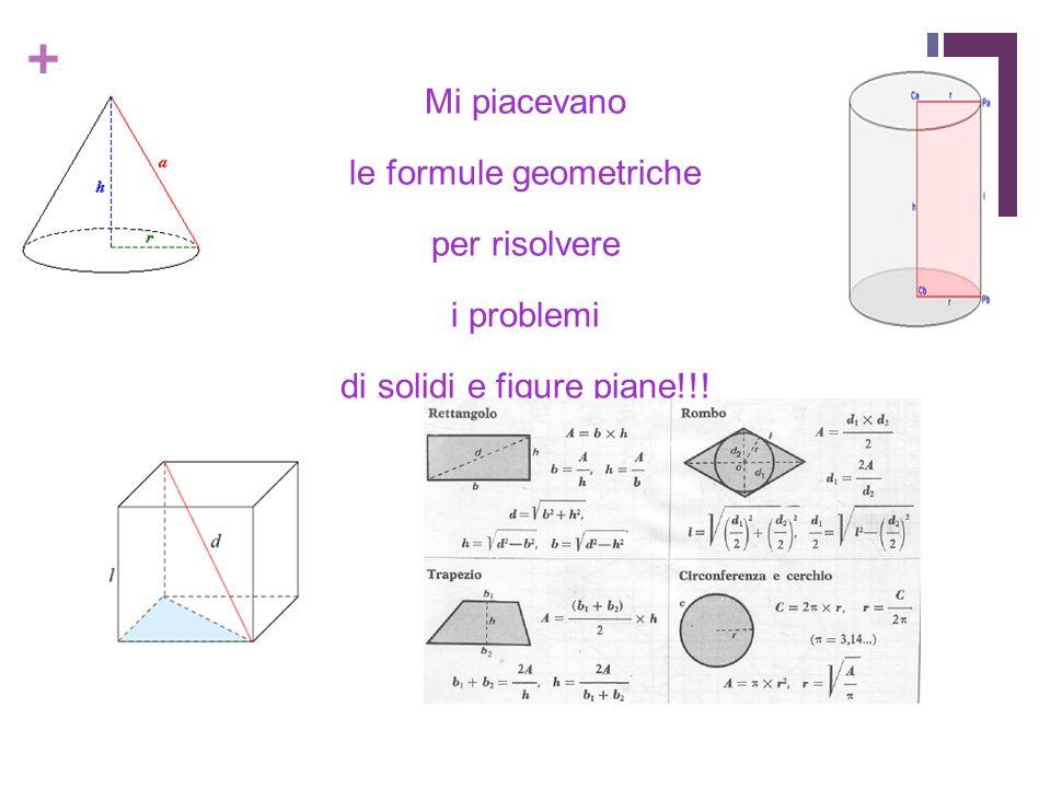 + Mi piacevano le formule geometriche per risolvere i problemi di solidi e figure piane!!!