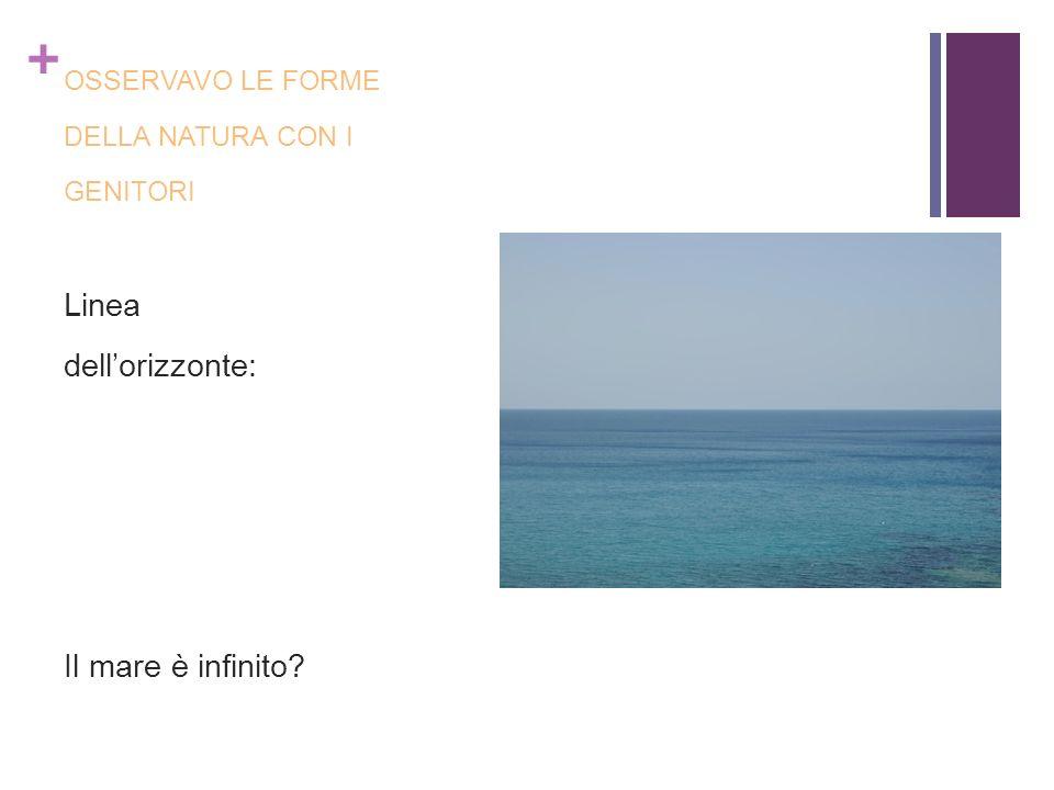+ OSSERVAVO LE FORME DELLA NATURA CON I GENITORI Linea dellorizzonte: Il mare è infinito?