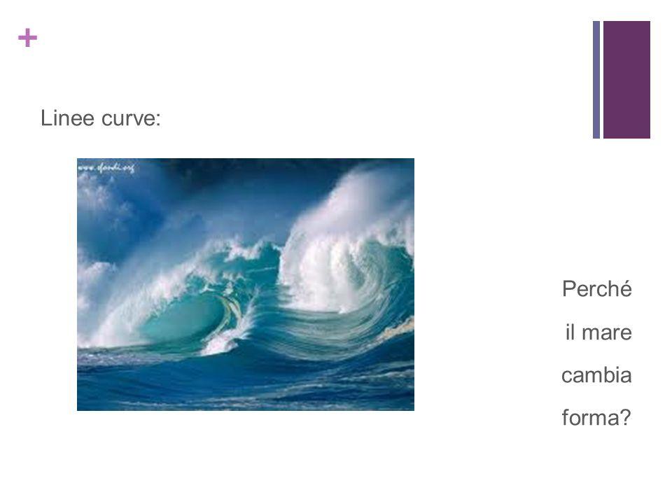+ Linee curve: Perché il mare cambia forma?