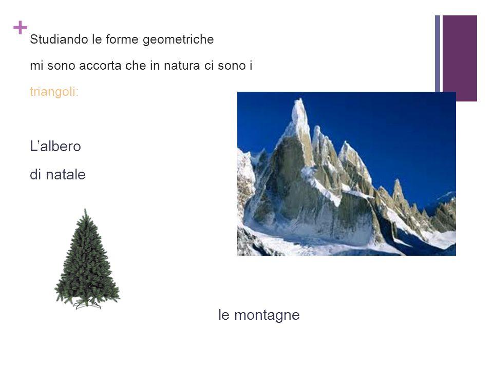 + Studiando le forme geometriche mi sono accorta che in natura ci sono i triangoli: Lalbero di natale le montagne