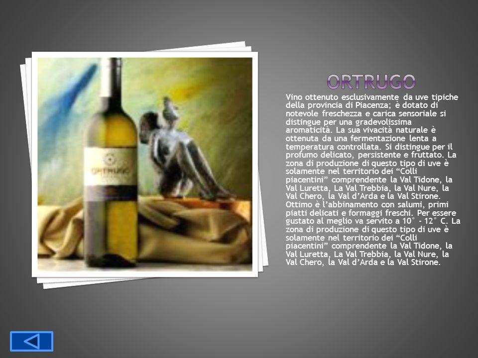 Vino ottenuto esclusivamente da uve tipiche della provincia di Piacenza; è dotato di notevole freschezza e carica sensoriale si distingue per una grad