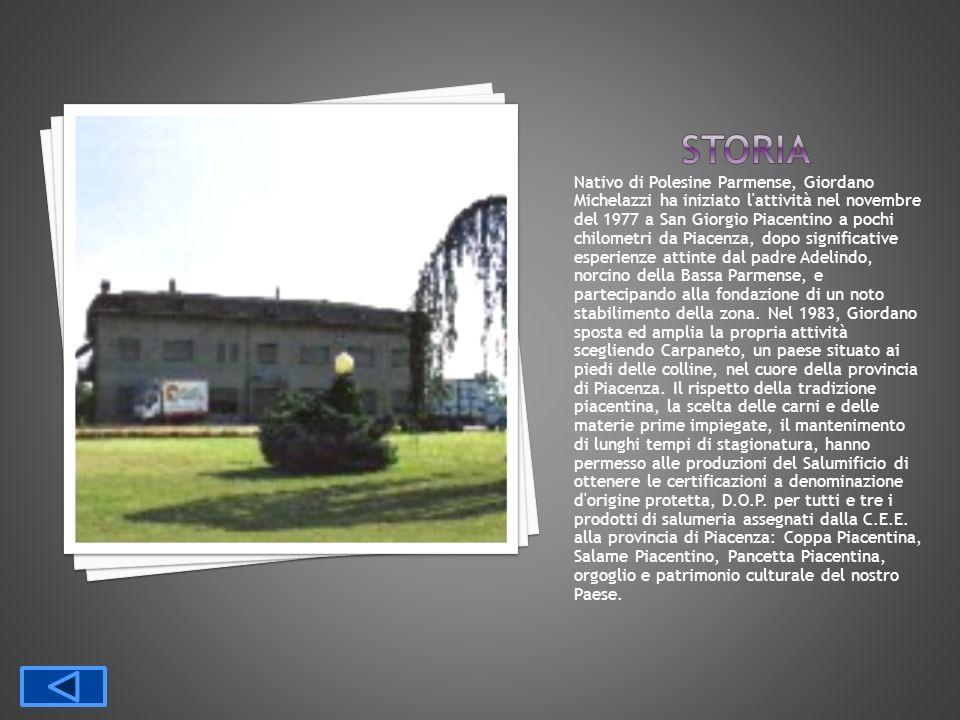 Nativo di Polesine Parmense, Giordano Michelazzi ha iniziato l'attività nel novembre del 1977 a San Giorgio Piacentino a pochi chilometri da Piacenza,