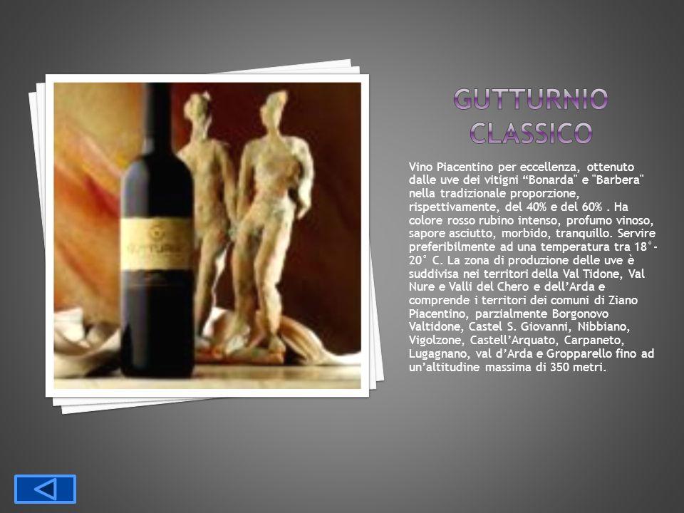 Vino Piacentino per eccellenza, ottenuto dalle uve dei vitigni Bonarda