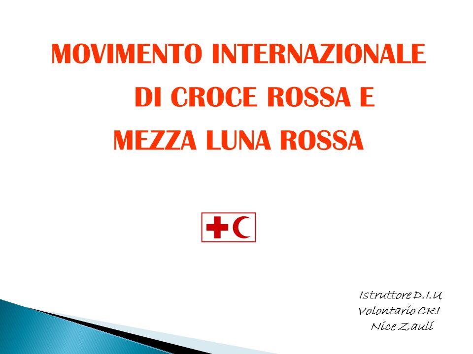 IL MOVIMENTO INTERNAZIONALE DI CROCE ROSSA E MEZZA LUNA ROSSA è unorganizzazione internazionale, non governativa, istituzionalizzata nel 1928 dalla XIII Conferenza Internazionale dell Aja e rappresenta la più grande organizzazione umanitaria mondiale