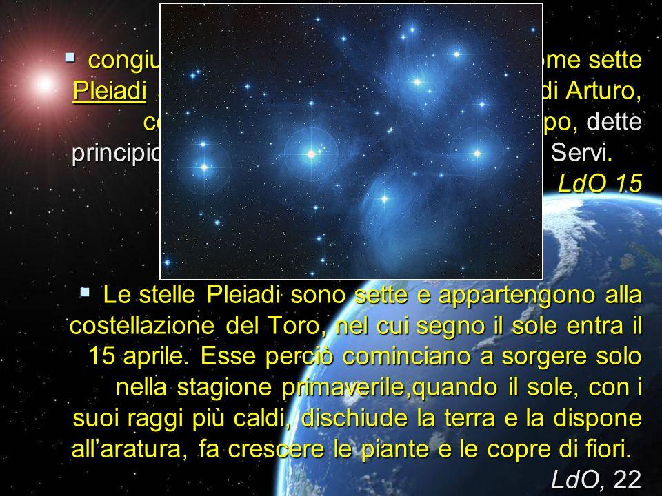 congiungendo i quali Nostra Signora, come sette Pleiadi a sciogliere spiritualmente il giro di Arturo, con la loro unione di anima e di corpo, dette p